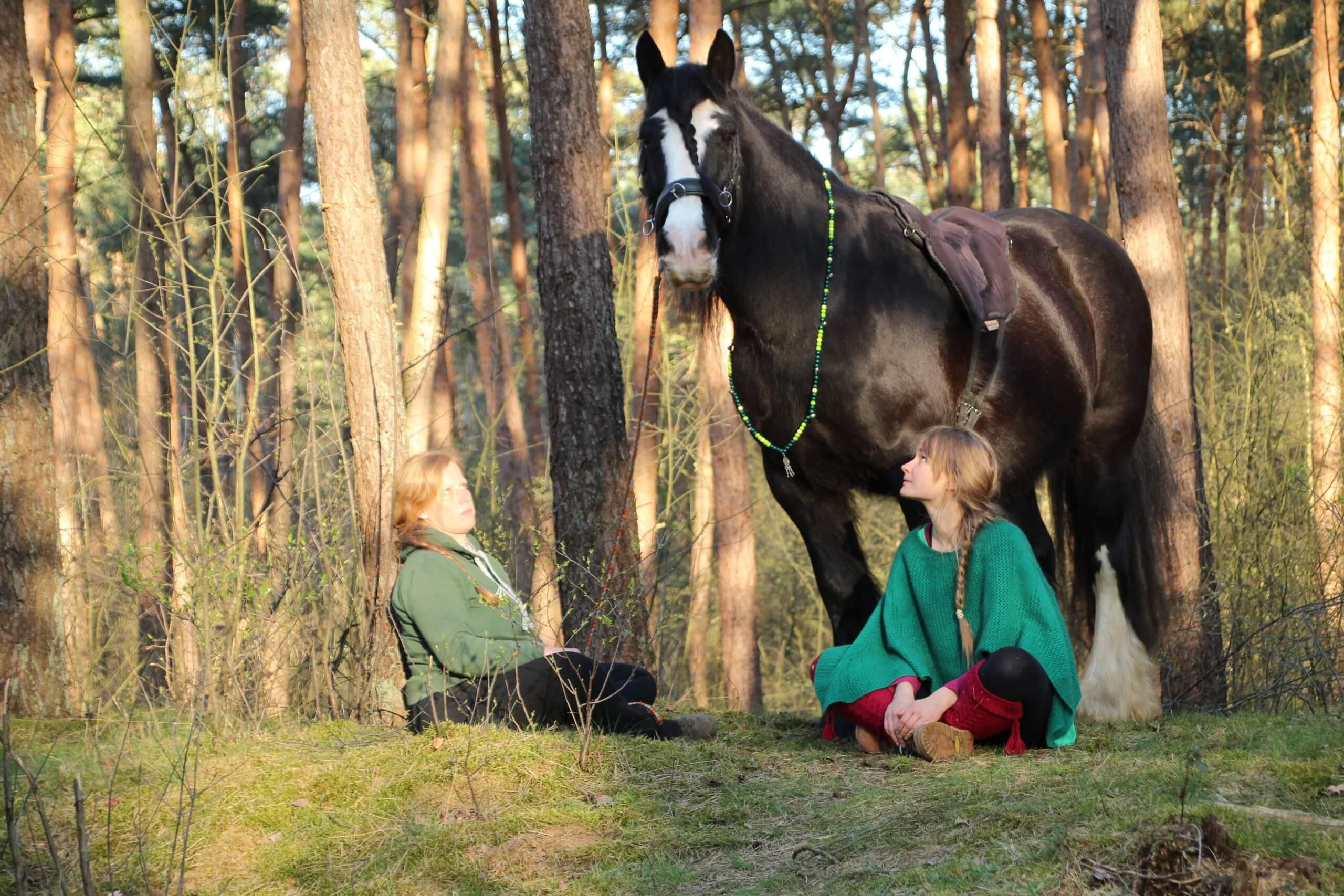 Reittherapie Pferdegestütztes Coaching im Wald